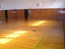 Wood Floor 23