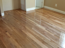 Wood Floor 16